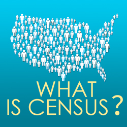 What is Census?