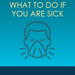 What to do if you are sick?